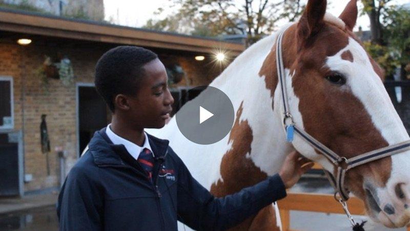 """ITV """"The inner city kids choosing horses over gangs"""""""